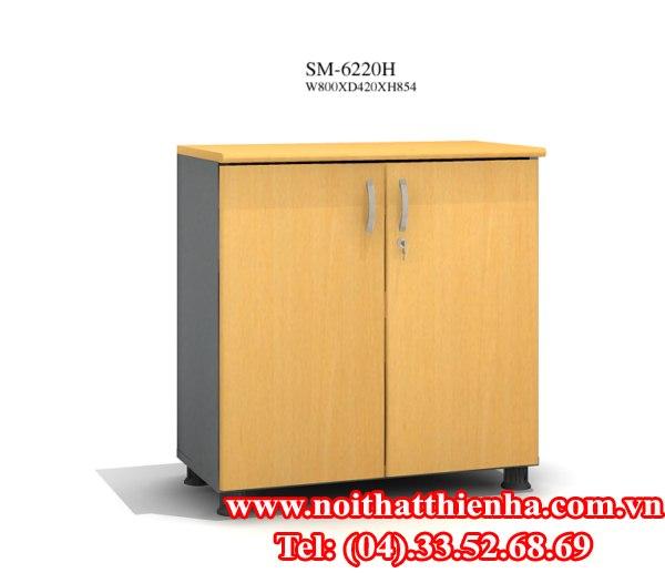 TỦ TÀI LIỆU SM6220FH